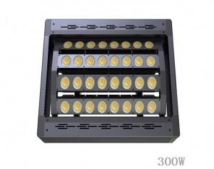 Прожектор для стадионов 300, LED прожектор 300, LED прожектор для спортивных объектов. Светодиодный прожектор для стадионов, LED прожектор для стадионов, освещение стадионов